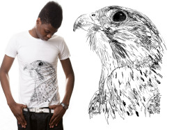 Exclusive T-Shirt of my Falcon illustration available at Mister Dress-UpIt may not be the Millennium Falcon, but a Peregrine Falcon is the next best thing…