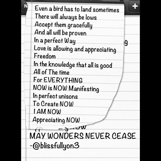 Even a bird has to land sometimes There will always be lows  Accept them gracefully  And all will be proven  In a perfect Way  Love is allowing and appreciating Freedom  In the knowledge that all is good  All of The time  For EVERYTHING  NOW is NOW Manifesting  In perfect unisons  To Create NOW   I AM NOW  Appreciating NOW  MAY WONDERS NEVER CEASE  - @blissfullyon3