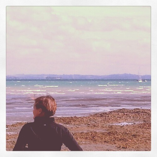 @llodes takes in the view outside our hotel in Waiheke / on Instagram http://instagr.am/p/WbEy36MHDr/