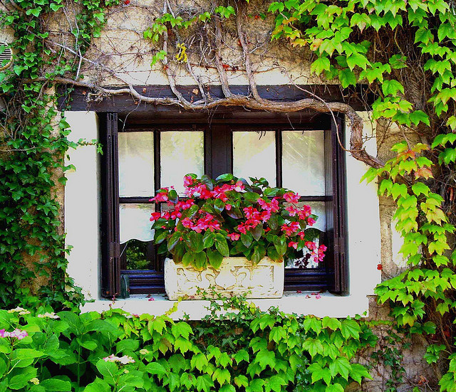 villesdeurope:  Beautiful window in Chenonceaux, France
