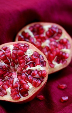 zarzor:  Pomegranate by juliet1504 on Flickr.