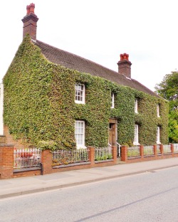 Ivy overgrown house, Great Barr, Birmingham, England All Original Photography by http://vwcampervan-aldridge.tumblr.com