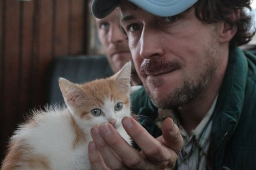 aidan gillen and a kitty is pure win