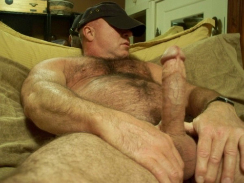 cg1701:  Wish I could find out who this is. He is such a natural for ALL BEAR. Anyone know?