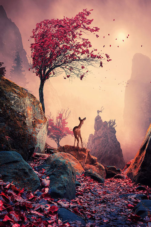 atraversso:  Majestic light  by Caras Ionut  Check  website for a SUPER OFFERBEST TUTORIALS COLLECTION 2013 l HOW IT's MADE l PURCHASE the PRINT