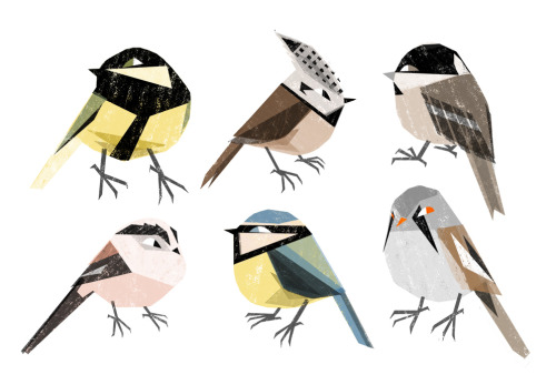 elladraws:  birds!