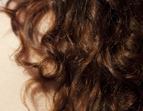 "Why Humidity Makes Your Hair Curl  If you have long hair, you probably don't need to look up a weather report to get an idea of how much humidity's in the air: You can simply grab a fistful of hair and see how it feels. Human hair is extremely sensitive to humidity—so much that some hygrometers (devices that indicate humidity) use a hair as the measuring mechanism, because it changes in length based on the amount of moisture in the air. Straight hair goes wavy. If you have curly hair, humidity turns it frizzy or even curlier. Taming the frizz has become a mega industry, with different hair smoothing serums promising to ""transform"" and nourish hair ""without weighing hair down."" But just why does humidity have this strange effect on human hair? Hair's chemical structure, it turns out, makes it unusually susceptible to changes in the amount of hydrogen present in the air, which is directly linked to humidity. Most of a hair's bulk is made up of bundles of long keratin proteins, represented as the middle layer of black dotstightly packed together in the cross-section at right. These keratin proteins can be chemically bonded together in two different ways. Molecules on neighboring keratin strands can form a disulfide bond, in which two sulfur atoms are covalently bonded together. This type of bond is permanent—it's responsible for the hair's strength—and isn't affected by the level of humidity in the air. But the other type of connection that can form between adjacent keratin proteins, a hydrogen bond, is much weaker and temporary, with hydrogen bonds breaking and new ones forming each time your hair gets wet and dries again. (This is the reason why, if your hair dries in one shape, it tends to remain in roughly that same shape over time.) Hydrogen bonds occur when molecules on neighboring keratin strands each form a weak attraction with the same water molecule, thereby indirectly bonding the two keratin proteins together. Because humid air has much higher numbers of water molecules than dry air, a given strand of hair can form much higher numbers of hydrogen bonds on a humid day. When many such bonds are formed between the keratin proteins in a strand of hair, it causes the hair to fold back on itself at the molecular level at a greater rate. On the macro level, this means that naturally curly hair as a whole becomes curlier or frizzier due to humidity. As an analogy, imagine the metal coil of a spring. If you straighten and dry your hair, it'll be like the metal spring, completely straightened out into a rod. But if it's a humid day, and your hair is prone to curling, water molecules will steadily be absorbed and incorporated into hydrogen bonds, inevitably pulling the metal rod back into a coiled shape.  Full Article"