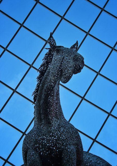 Leeds, Shopping Mall, Horse, Sculpture, City, Abstract by Jason...