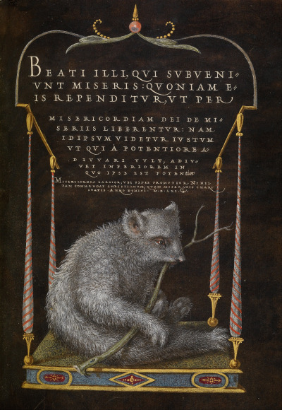 translucentmind:   A Sloth (1561 - 1562; illumination added 1591 - 1596)  by Joris Hoefnagel (1542 - 1600). The J. Paul Getty Museum