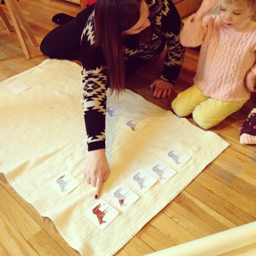Miss Charley teaches parts of a horse. #montessori