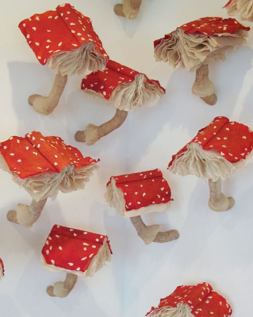 (S)Edition mushroom book installation by Melissa Jay Craig (via quipsologies)