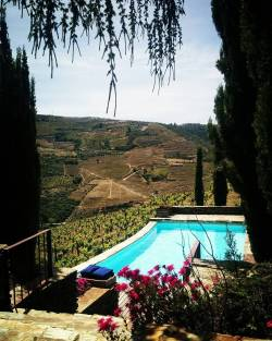 Where the river merges with the sky. The Douro Valley! #portugal #douro http://ift.tt/1W9lx8E