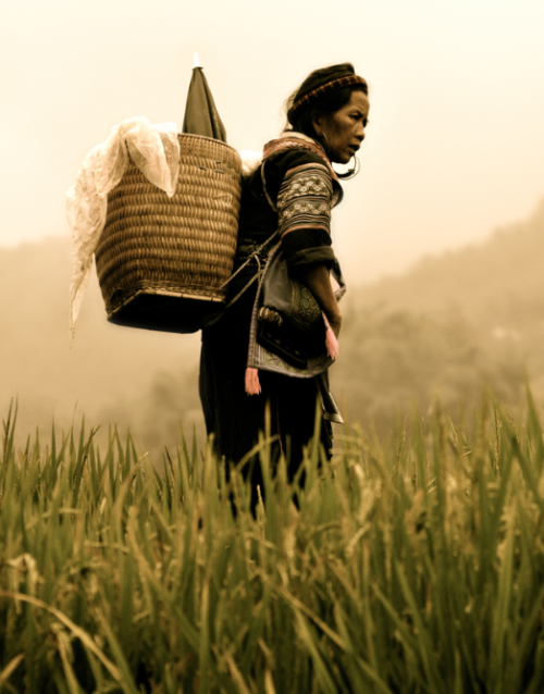 "Sapa, Vietnam by Diego Arroyo ""I took this shot of a Hmong woman in a rice field in the region of Sapa, in north Vietnam."" View more of Diego's photography at his website. Image copyright Diego Arroyo and used with permission. — See the world's most inspirational images every Thursday in Photography Week. Get five free issues today at http://bit.ly/RHzJmN"