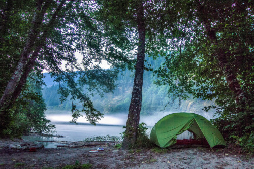 f0rbidden-forest:  Misty twilight at camp along the Squamish River, British Columbia (by Allison | SenecaCreekPhotography.com)