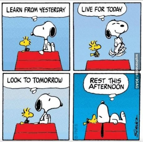 9gag:  Pearls of Wisdom with Snoopy The Dog
