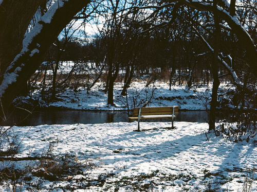 WinterBk_6 on Flickr.