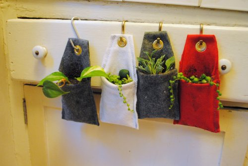 Mini Wall Planters - Stay tuned for a full DIY post coming soon. Decorate your home, office, and more!