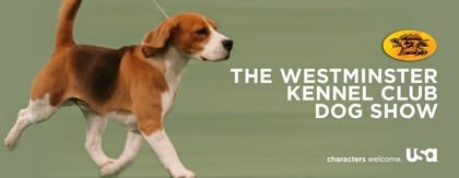 WATCH THE @WKCDOGS JUDGING ON @USA_NETWORK LIVE HEREby HelloGiggles Team http://bit.ly/YoDE7s