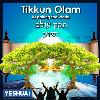 Tikkun Olam: Repairing the World