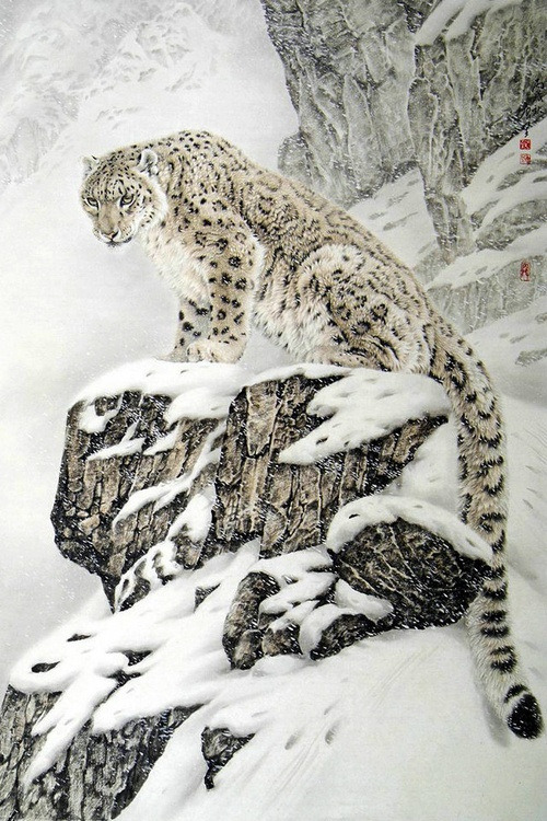 bluepueblo:  Snow Leopard, China photo via neal