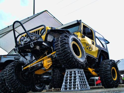 Big Bird by Waldys Offroad