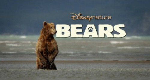 tofuboots:  fybears:  via 'Bears' Trailer: Disneynature Gets Grizzly in 2014 | /Film exciting stuff!  EEEEEEE!