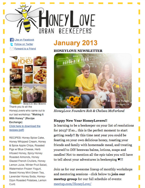 Click here to view HoneyLove's January 2013 Newsletter