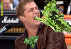 Broccoli Rabe Thomas