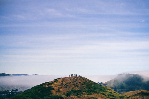 Twin Peaks, San Francisco. (by Cory Schmitz)