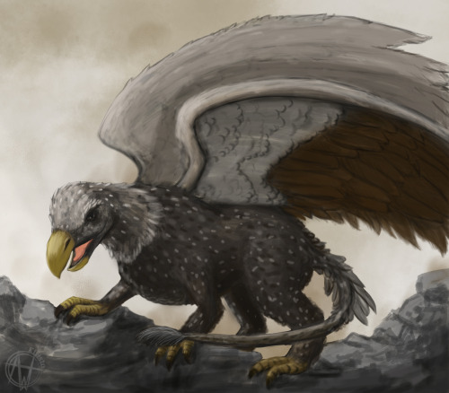 Weekly sketch challenges with friends Week 01: Gryphon(Or Griffon depending on your spelling preference  I don't know the difference to be honest.)
