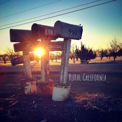 Rural California.  This mornings sunrise.  #bestofOver