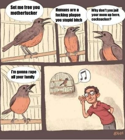 fuckyeahragetoons:  birds in cages