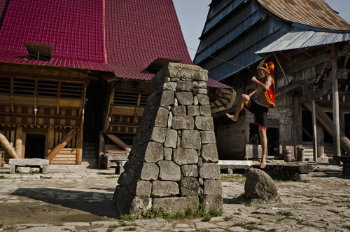 Check out these great stone jumping pictures (via Stone-jumping on Nias island - in pictures | World news | guardian.co.uk)