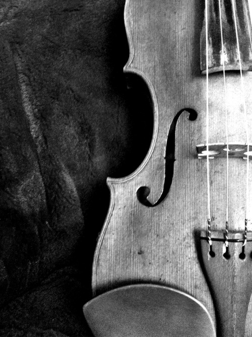 achro-matique:  My beautiful violin.
