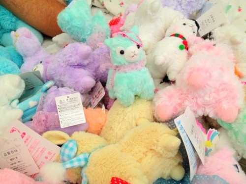 rosy61987:  gummy-octopus:  Oh just some of my alpacas…  omg!! gummy !! your picture is so cute>~<~ so candy color~~