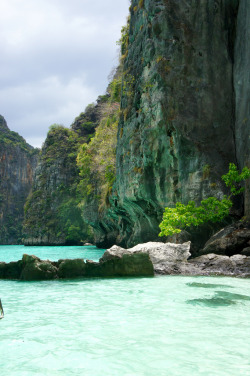 x-enial:  Phi Phi Islands, Thailand by Michael Doyle