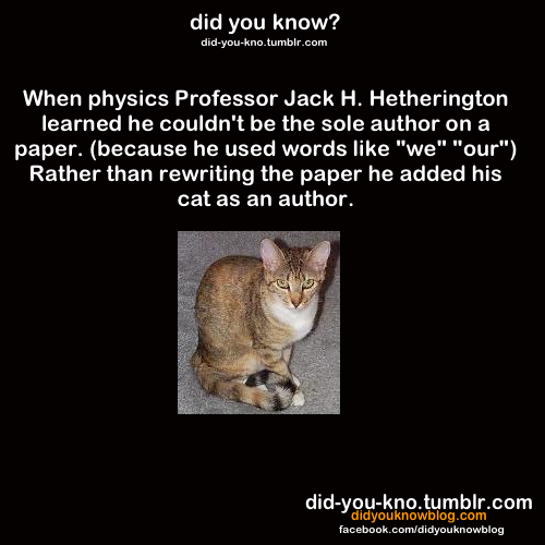 did-you-kno:  Source  According to the linked source, the cat later went on to publish a paper by himself. In French. Ah, science publishing.