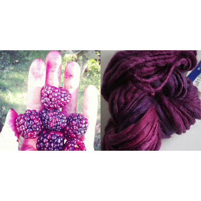 Color palette. The tastiest blackberries I've ever had & Malabrigo Gruesa Wool Yarn in Burgundy .. Paleta de color. Las zarzamoras más ricas que he probado & estambre Gruesa Wool de Malabrigo en Burgundy.