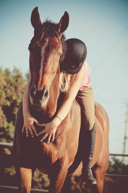 lifelongequestrian:  please don't change the source :)