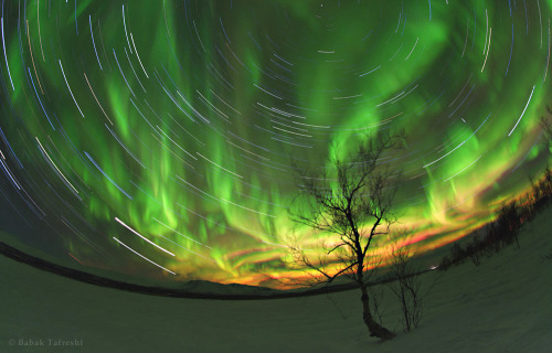 Aurora Trails Star trails and aurora motion are captured in a long exposure image from Lapland, northern Sweden. — Babak Tafreshi