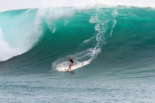 wave @ outer reef, sumba island, east nusa, indonesia. source: surfline.com