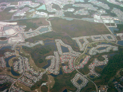 ghostfern:  Florida housing developments.