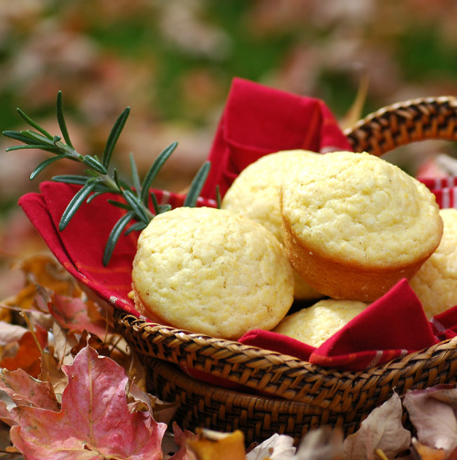 Creamy Corn Muffins by Savoring Time in the Kitchen