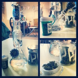 Mmm clean #bong & good #buds. #zob #glass #marijuana #weed #ganja #MachineEmpire #cult #medicalmarijuana #faded #hightimes #highsociety #hightillidie #fadedcrew #potheadsociety #potheadnation #stonercouples #stonernation #stonersofinstagram #420 #420lifestyle