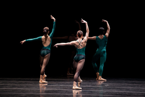 theballetblog:  In the Middle Somewhat Elevated