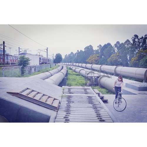 Hong Kong fixed gear girl #fgg #fixed #fixie #fixedgear #fixiegirl #fixielicious #hk #hkfg #hkfgg #hongkong #hongkongfixedgear #hongkongfixedgeargirl #cinelli #cycling #bike #black #bicycle #girlsonbike #girl #supercorsa