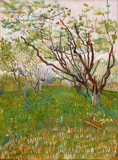 #van_gogh, #art, #wiese, #fruehling, #spring, #painting