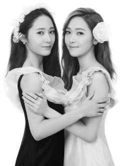 the Jung Sisters are back!! they were chosen as the faces of Stonehenge! (jewelry brand) they looks so pretty~~!! click for more NEWS or KPOP