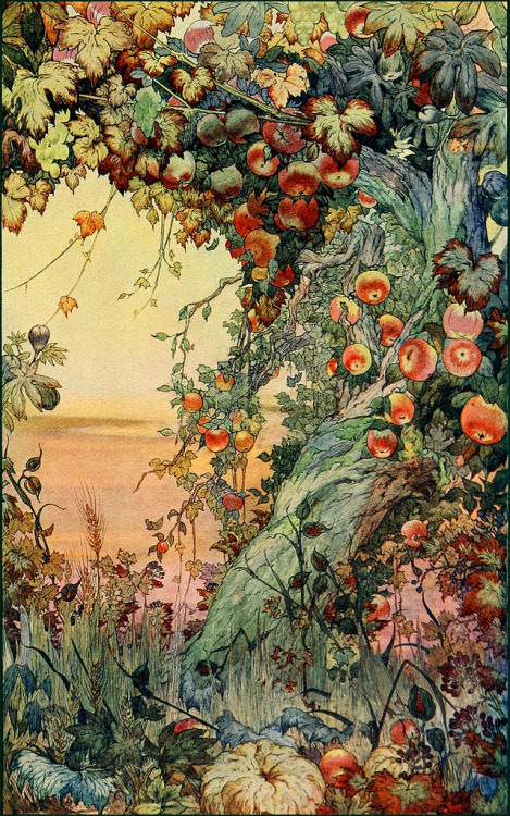 inspiration274:  'Enchanted apple tree' by ? — UPDATE: 'The Fruits of the Earth' (1911) by Edward J. Detmold' (by Plum leaves)