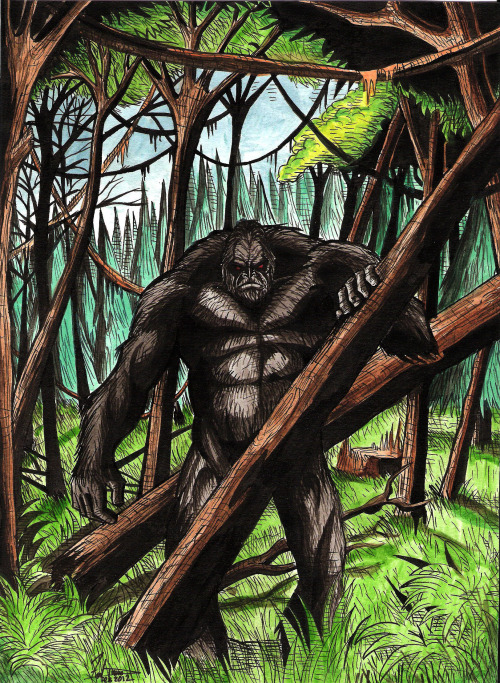 Bigfoot in the Forest by ~DredFunn